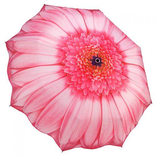Pink GerberaDaisy